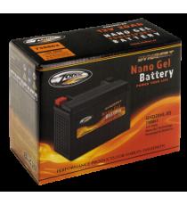 Batteria Nano Gel High Power Zodiac OEM 65989-90B