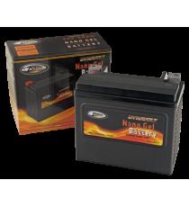 Batteria Nano Gel High Power Zodiac OEM 66010-97B