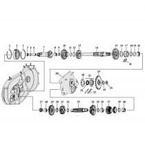 Anello di Tenuta Cuscinetto Albero Principale Cambio Harley Davidson XL Sportster 1952 – 1984