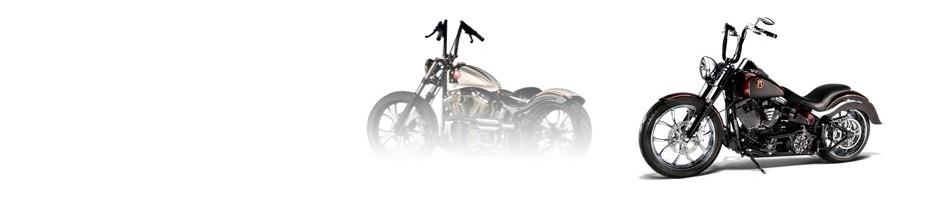 Cerchi e pneumatici Harley Davidson